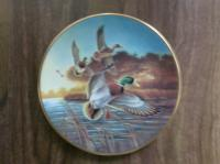 Collector Plate - Mallards at Sunrise