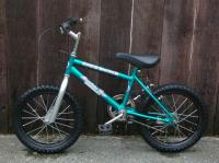 Boys or Girls Mountain Bike, Ages 4-10